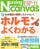 Nursing Canvas 2016年11月号