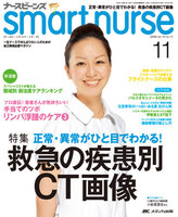ナースビーンズsmart nurse vol.10no.11(2008-11)