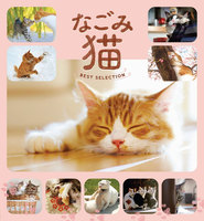 なごみ猫 BEST SELECTION