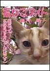 福ねこフォト~プニプニ猫にゃん 猫だってお花見するにゃんの巻(3) 電子書籍版