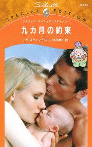 九カ月の約束 【都合のいい結婚】 電子書籍版