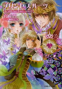 ルルル文庫 プリンセスハーツ4 ~恋とお忍びは王族のたしなみの巻~(イラスト完全版)
