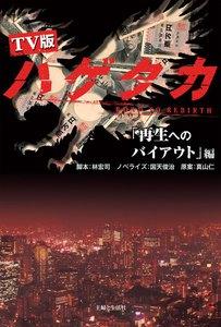 TV版 ハゲタカ「再生へのバイアウト」編