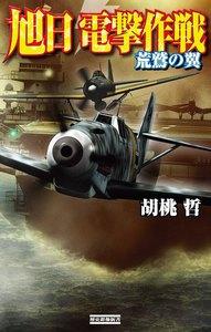 旭日 電撃作戦 荒鷲の翼