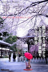 Tokyo Cherry Blossom 東京の桜 ~新宿 中央公園・熊野神社(十二社)~
