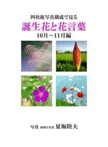 四枚組写真構成で見る誕生花と花言葉10~11月編 電子書籍版