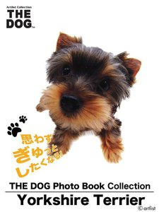 THE DOG Photo Book Collection Yorkshire Terrier