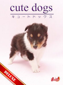 cute dogs DELUXE01 シェットランド・シープドッグ 電子書籍版