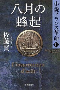 八月の蜂起 小説フランス革命11