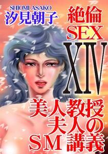 絶倫SEX14 美人教授夫人のSM講義