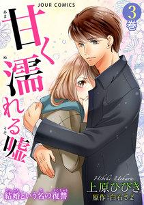 甘く濡れる嘘~結婚という名の復讐~ (3) 電子書籍版