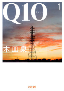Q10 1