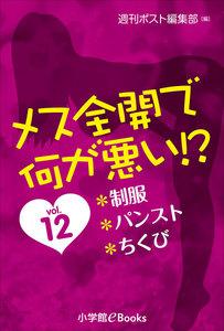 メス全開で何が悪い!?vol.12~制服、パンスト、ちくび~ 電子書籍版