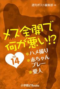 メス全開で何が悪い!? vol.14~ハメ撮り、赤ちゃんプレー、愛人~ 電子書籍版