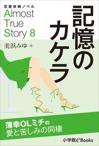 恋愛体験ノベル Almost True Story8 記憶のカケラ【短編】 ~薄幸OLミチの愛と苦しみの同棲~