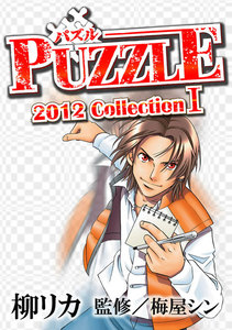 PUZZLE 2012collectionI