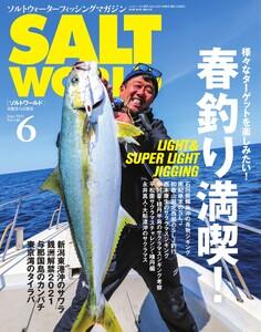 SALT WORLD
