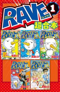 表紙『RAVE 超合本版』 - 漫画
