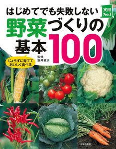 はじめてでも失敗しない野菜づくりの基本100 電子書籍版