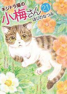 キジトラ猫の小梅さん (21) 電子書籍版