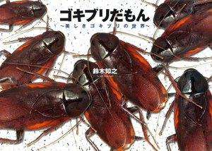 ゴキブリだもん~美しきゴキブリの世界~