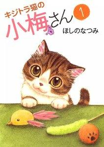 キジトラ猫の小梅さん 1巻