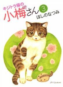 キジトラ猫の小梅さん 3巻