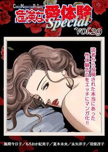 危険な愛体験special vol.29