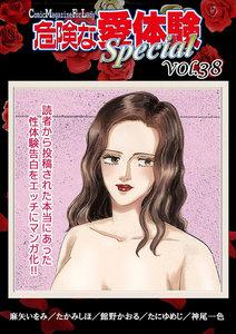 危険な愛体験special vol.38