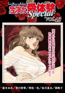 危険な愛体験special vol.43