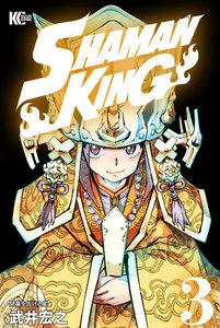 SHAMAN KING ~シャーマンキング~ KC完結版 3巻