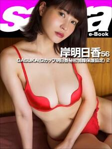 GASUKA(Gカップ明日香秘密情報保護協定) 2 岸明日香56 [sabra net e-Book]
