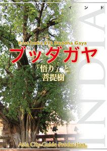 東インド012ブッダガヤ ~「悟り」と菩提樹