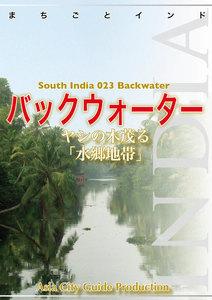 南インド023バックウォーター(コッラム~アラップーザ) ~ヤシの木茂る「水郷地帯」