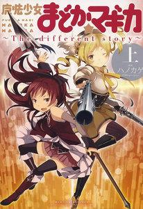 魔法少女まどか☆マギカ ~The differrent story~