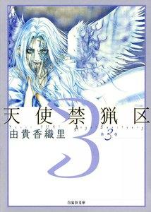 天使禁猟区 3巻