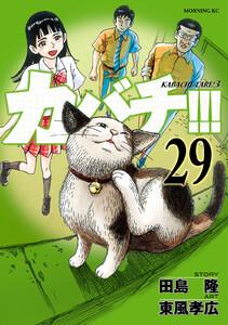 カバチ!!! -カバチタレ!3- (29) 電子書籍版