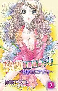 禁断エロチカ~純愛エロチカ2~ 3巻
