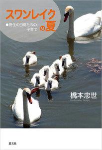 スワンレイクの夏―野生の白鳥たちの子育て
