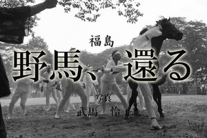 野馬、還る ~福島~