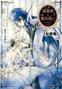 霧籠姫と魔法使い 分冊版 (5) 恋に落ちる薬