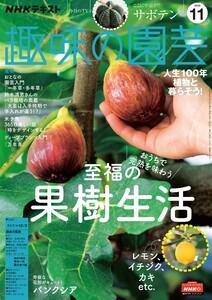 NHK 趣味の園芸 2020年11月号 電子書籍版