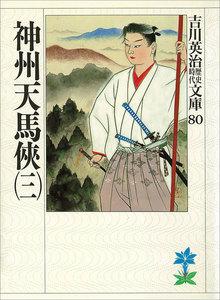 神州天馬侠 (三)