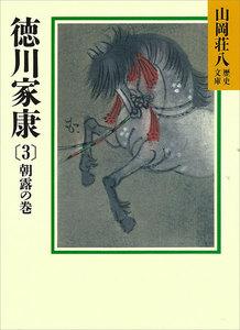 徳川家康 (3) 朝露の巻