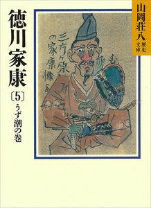 徳川家康 (5) うず潮の巻