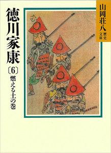 徳川家康 (6) 燃える土の巻