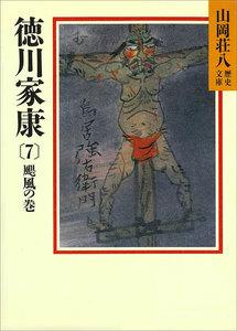徳川家康 (7) 颶風の巻