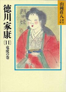 徳川家康 (11) 龍虎の巻