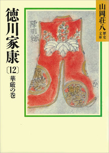 徳川家康 (12) 華厳の巻