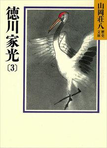 徳川家光 (3)